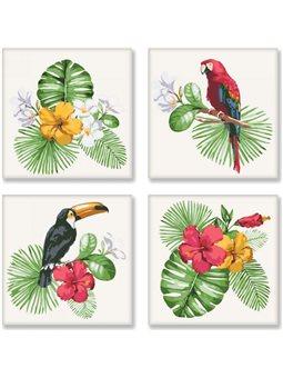 Набор для росписи по номерам Тропическое разнообразие [KNP007]