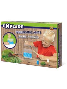 Ігровий набір для юного зоолога - мурашина ФЕРМА [25084S]