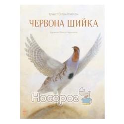 """Класика в ілюстраціях - Червона Шийка """"Ранок"""" (укр.)"""