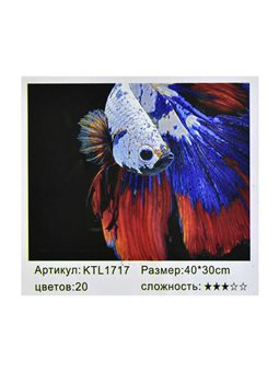 Картина по номерам KTL 1717 (30) в коробке 40х30 [74899]