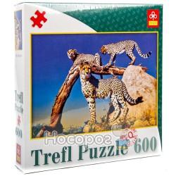 """89001 Пазл """"600 ел."""" - Дикие леопарды/ Фото"""