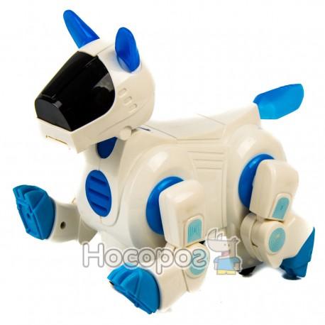 Робопёс 7100 В (двигает головой и хвостом, ходит, свет, музыка, на батарейках) (36)