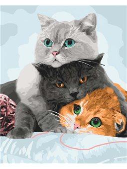 Три кота [КН4151]