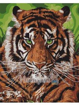 Непереможний тигр [КНО4143]