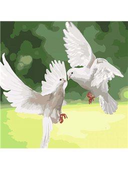 Картины по номерам - Белоснежные голуби (КНО4149)