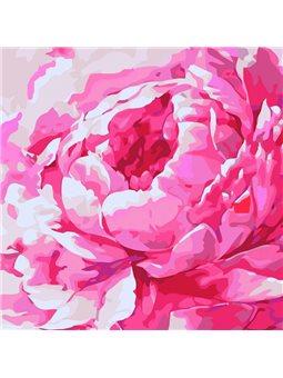 Картины по номерам - Розовый пион 2 (КНО2949)