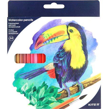 Фото Карандаши цветные акварельные Kite K18-1050, 24 шт.