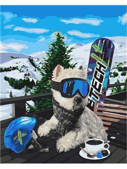 Картины по номерам - Сноубордист (КНО4171)
