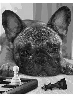 Картины по номерам - Лучший игрок (КНО4176)