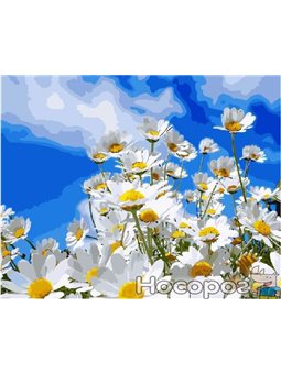 Картина по номерам Brushme 'Полевые ромашки' [GX8436]