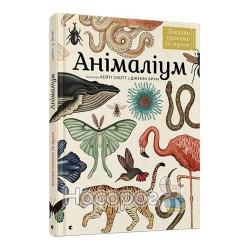 Анималиум