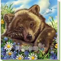 Милі звірятка: Медвежонок (р)