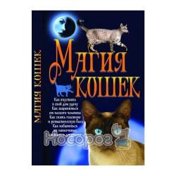 Магія кошек