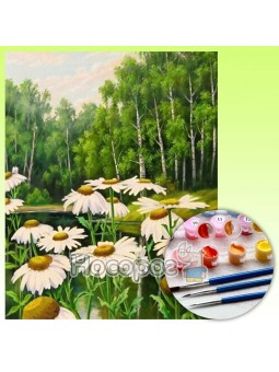 Картина по номерам Лесные ромашки Y5496_O