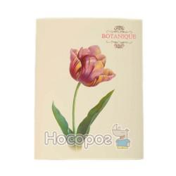 "Папка с 30 файлами A4 ""Botanique"" L6186"
