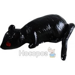 Тварини-Лизуни B24368