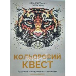Книга для дозвілля Кольоровий квест