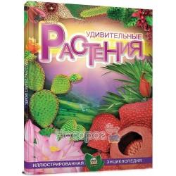 Удивительные растения (рус.)