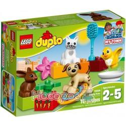 """Конструктор LEGO """"Домашні улюбленці"""" 10838"""